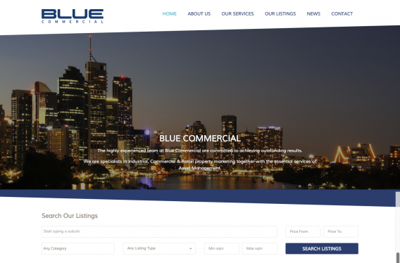 Portfolio Blue Commercial 1